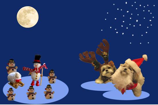 クリスマスですよ~.jpg
